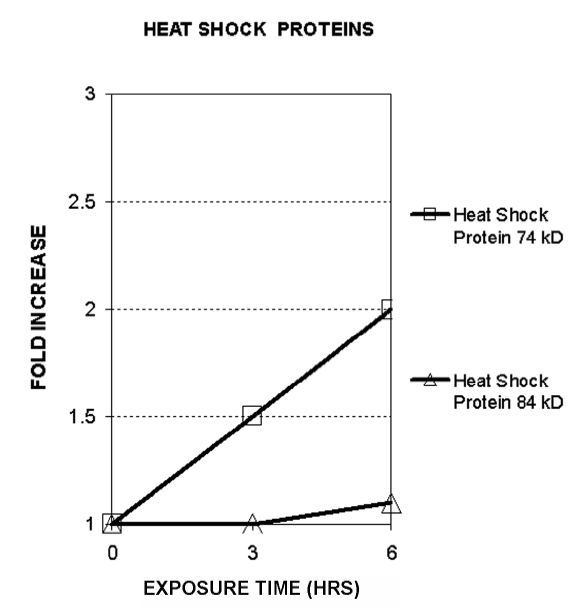 Figure 8. Gene transcript for heat-shock protein 74 kD showed a time-dependent increase of two-fold
