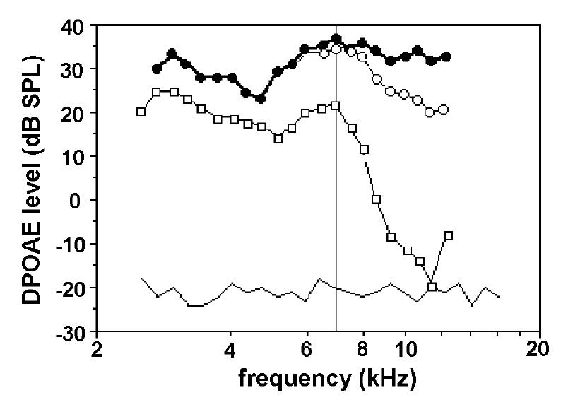 Figure 4. Other example of the effects of 15-min complete ischemia on a gerbil ear previously exposed to auditory fatigue. Primary levels: 70 dB SPL. Closed circles: initial DPgram; open circles: DPgram after auditory fatigue; open squares: after ischemia; thinner line: average noise floor. Beyond the thin